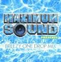 Maximum Sound presents 「BREEZY ONE DROP Mix」