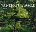 WONDERFUL WORLD(通常盤)