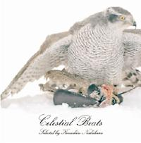 Celestial Beats selected by Kenichiro Nishihara/オムニバスの画像・ジャケット写真