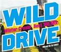 WILD DRIVE -Winter Crusin' Best 100 Mix-
